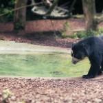 Ein Besuch im Dortmunder Zoo.